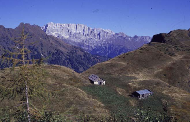 gite alpinismo giovanile cai conegliano 2005